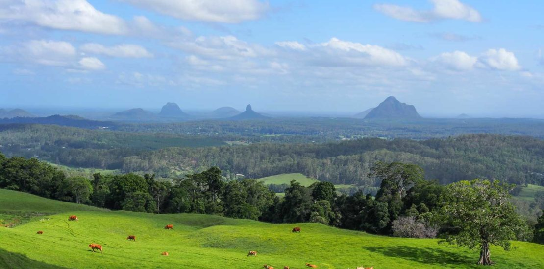 water cartage maleny